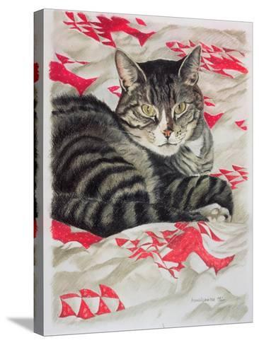Cat on Quilt-Anne Robinson-Stretched Canvas Print