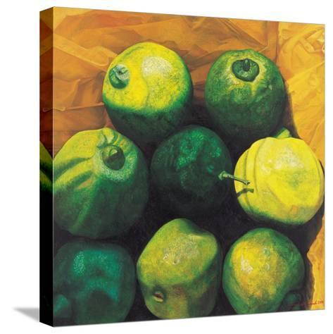 Limes, 2004-Pedro Diego Alvarado-Stretched Canvas Print