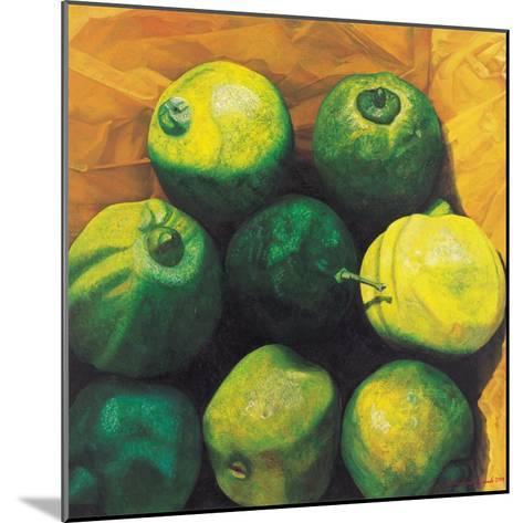 Limes, 2004-Pedro Diego Alvarado-Mounted Giclee Print