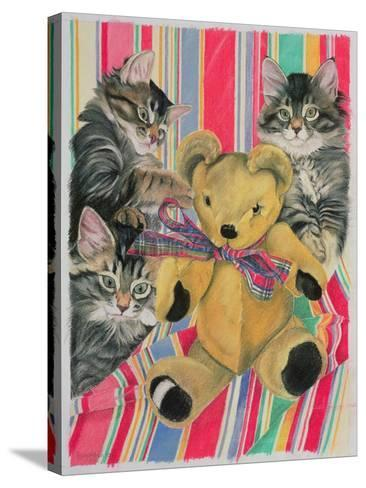 Kittens and Teddy-Anne Robinson-Stretched Canvas Print