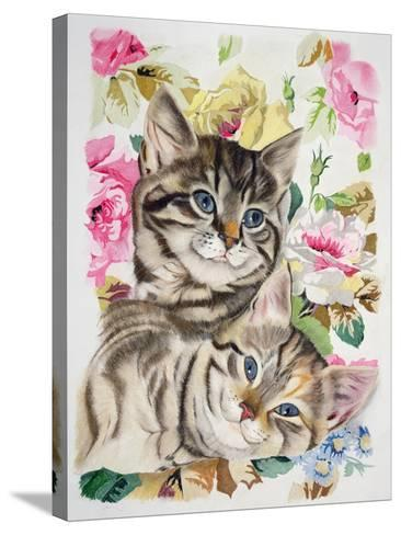 Two Kittens-Anne Robinson-Stretched Canvas Print