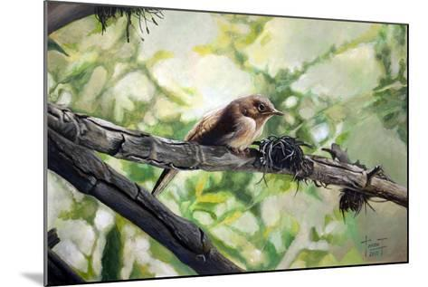 House Wren, the Harmonious Singing, 2010-Cruz Jurado Traverso-Mounted Giclee Print