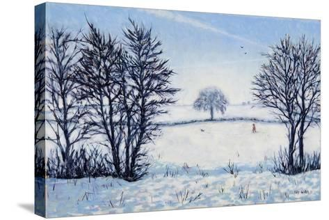 A Winters Walk-Tilly Willis-Stretched Canvas Print