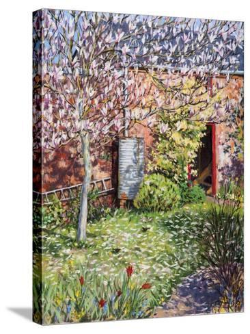 Under the Magnolia-Tilly Willis-Stretched Canvas Print