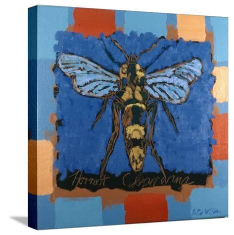 Hornet Clearwing, 1996-Peter Wilson-Stretched Canvas Print