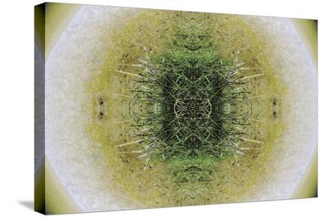 Unnatural 6.1-Giovanni Cafagna-Stretched Canvas Print