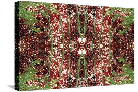 Unnatural 23-Giovanni Cafagna-Stretched Canvas Print