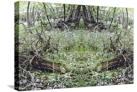 Unnatural 33-Giovanni Cafagna-Stretched Canvas Print