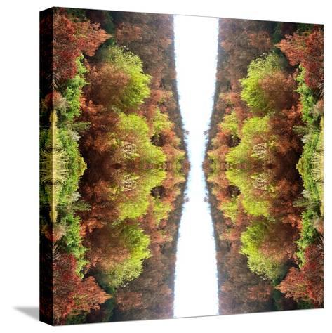 Unnatural 77-Giovanni Cafagna-Stretched Canvas Print