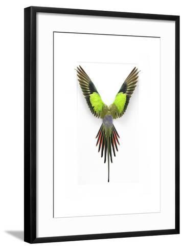 Princess of Wales-Christopher Marley-Framed Art Print