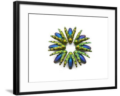 Prism Minor Detail-Christopher Marley-Framed Art Print