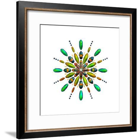 Prism No. 3-Christopher Marley-Framed Art Print