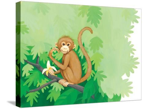 One Little Monkey - Turtle-Kathryn Mitter-Stretched Canvas Print