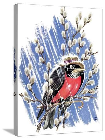 Wet Robin - Child Life-Keith Ward-Stretched Canvas Print