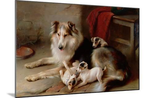 A Collie with Fox Terrier Puppies, 1913-Walter Hunt-Mounted Giclee Print