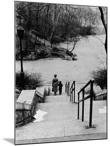 Central Park in Winter, c.1953-64-Nat Herz-Mounted Photographic Print