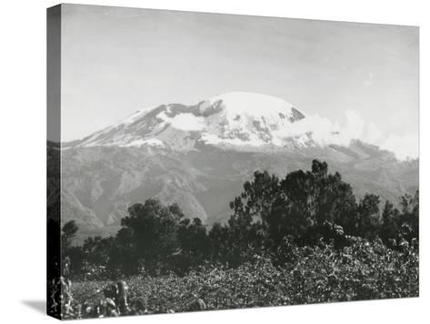 Mount Kilimanjaro, Tanzania, 1920-English Photographer-Stretched Canvas Print