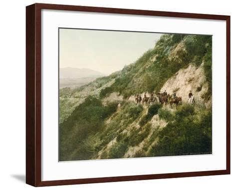 Old Trail to Mount Wilson, Pasadena, California, 1900-American School-Framed Art Print