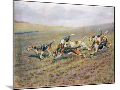Crossing the Fields, Illustration from 'Hounds'-Thomas Ivester Lloyd-Mounted Giclee Print
