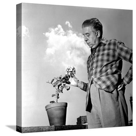 Eugenio Montale, 11th December 1960--Stretched Canvas Print