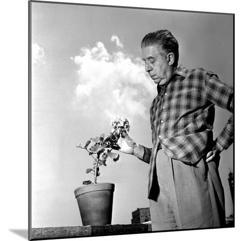 Eugenio Montale, 11th December 1960--Mounted Photographic Print