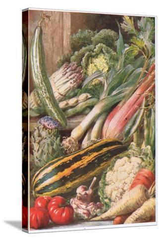 Garden Vegetables, Illustration from 'Garden Ways and Garden Days'-Louis Fairfax Muckley-Stretched Canvas Print