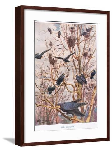 The Rookery, Illustration from 'Country Ways and Country Days'-Louis Fairfax Muckley-Framed Art Print