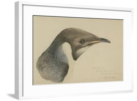 Immature Emperor Penguin, McMurdo Strait, 6 Feb, 1904-Edward Adrian Wilson-Framed Art Print