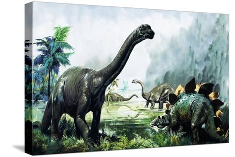 Pre-Historic Animals-David Nockels-Stretched Canvas Print