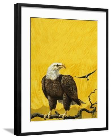 Eagle-English School-Framed Art Print