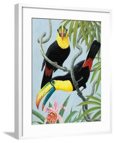 Big-Beaked Birds-R.B. Davis-Framed Art Print