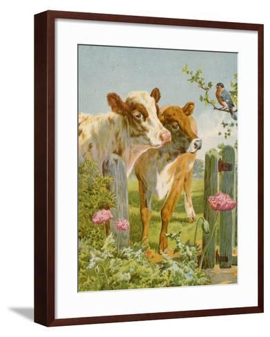 A Piping Bullfinch-English School-Framed Art Print