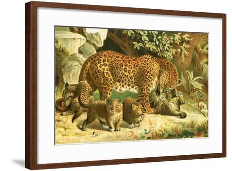 Leopards-English School-Framed Art Print