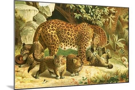 Leopards-English School-Mounted Giclee Print
