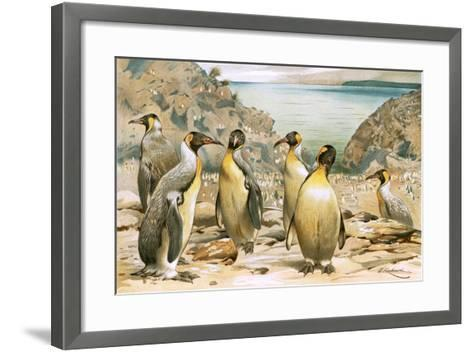 Giant Penguins-Wilhelm Kuhnert-Framed Art Print