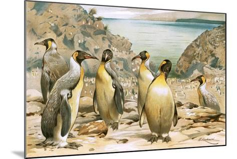 Giant Penguins-Wilhelm Kuhnert-Mounted Giclee Print