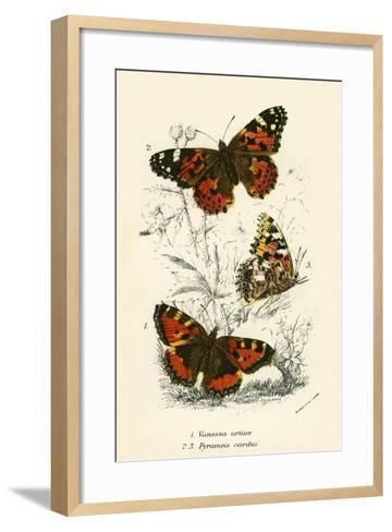 Butterflies-English School-Framed Art Print