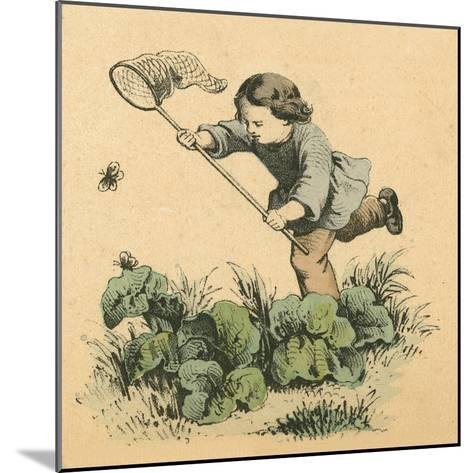Butterflying-English School-Mounted Giclee Print