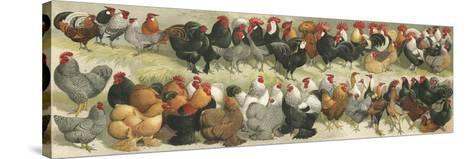 Fowl-Alexander Francis Lydon-Stretched Canvas Print