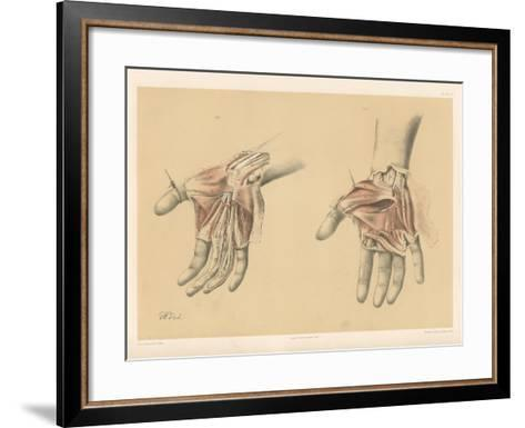 The Upper Limb. Superficial and Deep Views of the Palm of the Hand-G. H. Ford-Framed Art Print