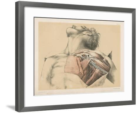 The Upper Limb. The Axillary Vessels, and the Brachial Plexus of Nerves, with their Branches-G. H. Ford-Framed Art Print