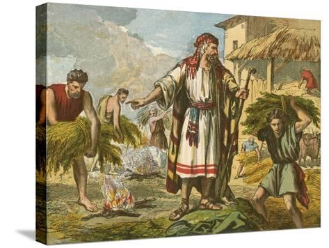 The Wheat and the Tares-English School-Stretched Canvas Print
