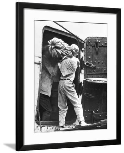 Workers Loading Bananas, Veracruz, 1927-Tina Modotti-Framed Art Print