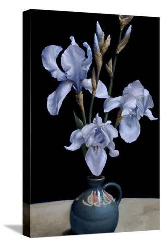 Irises, 2010-James Gillick-Stretched Canvas Print
