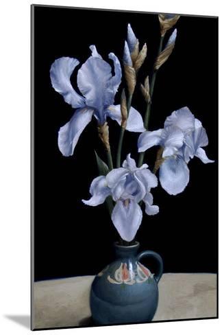 Irises, 2010-James Gillick-Mounted Giclee Print