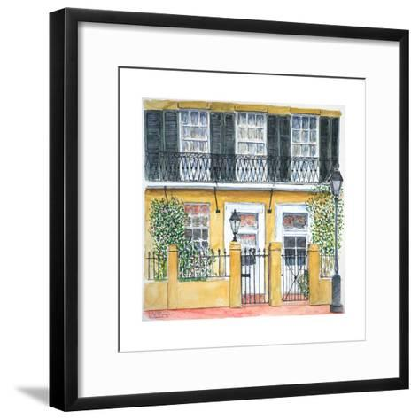 New Orleans, Dauphine St., 2008-Anthony Butera-Framed Art Print