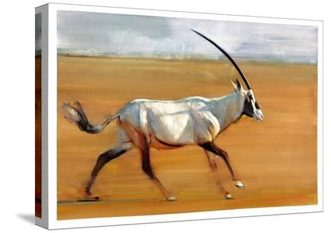 Galloping Oryx, 2010-Mark Adlington-Stretched Canvas Print