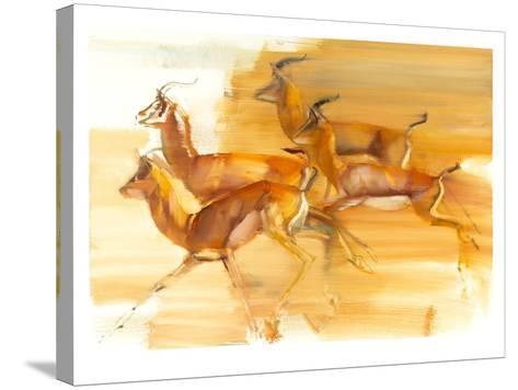 Running Gazelles, 2010-Mark Adlington-Stretched Canvas Print