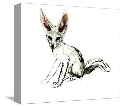 Foxy (Sand Fox), 2009-Mark Adlington-Stretched Canvas Print