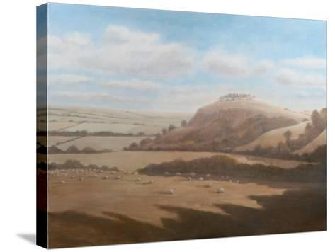 Gloucestershire Landscape, 2012-Lincoln Seligman-Stretched Canvas Print